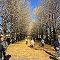 20151120_Tokyo_Bruce_134.jpg