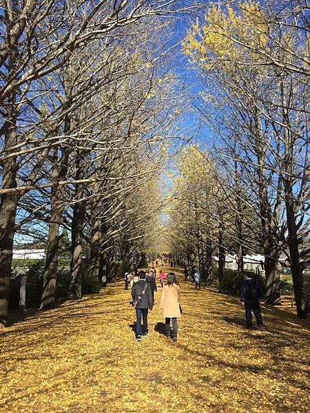 20151120_Tokyo_Bruce_141.jpg