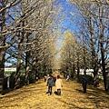 20151120_Tokyo_Bruce_142.jpg