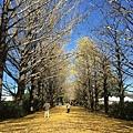 20151120_Tokyo_Bruce_148.jpg