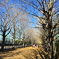 20151120_Tokyo_Bruce_153.jpg