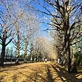20151120_Tokyo_Bruce_154.jpg