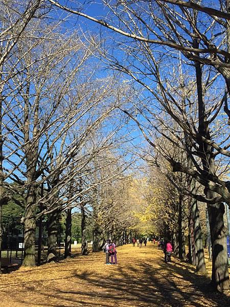 20151120_Tokyo_Bruce_166.jpg