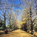 20151120_Tokyo_Bruce_172.jpg