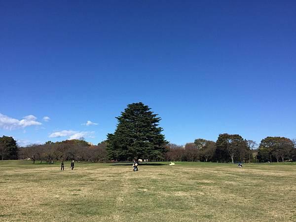 20151120_Tokyo_Bruce_184.jpg