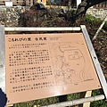 20151120_Tokyo_Bruce_211.jpg