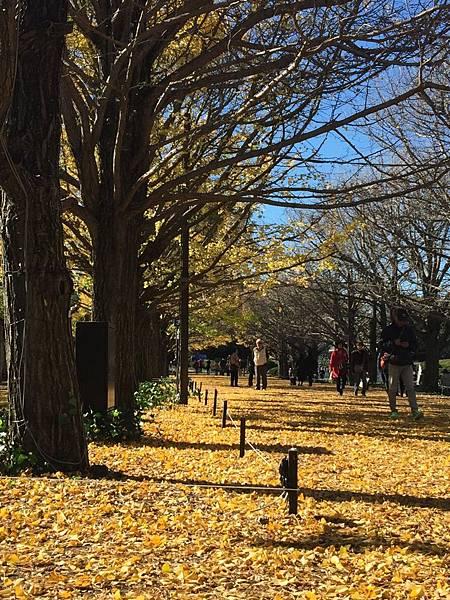 20151120_Tokyo_Bruce_270.jpg