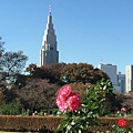20151120_Tokyo_Bruce_464.jpg