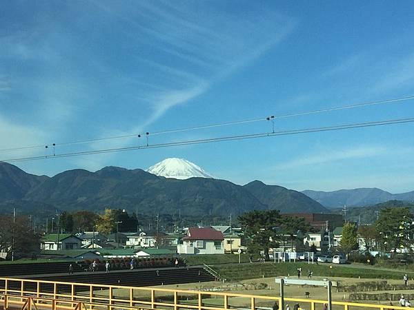 20151120_Tokyo_Bruce_655.jpg