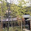 20151120_Tokyo_Bruce_697.jpg