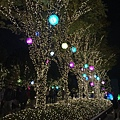 20151120_Tokyo_Bruce_731.jpg