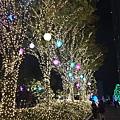 20151120_Tokyo_Bruce_733.jpg