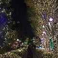 20151120_Tokyo_Bruce_732.jpg