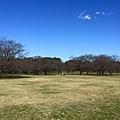 Showa-Kinen_Park.jpg