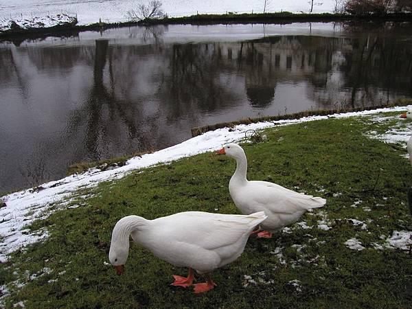 2003_Europe_Leiden_21.jpg