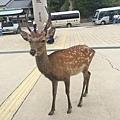 20160904_Hiroshima_109.jpg