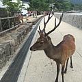 20160904_Hiroshima_126.jpg
