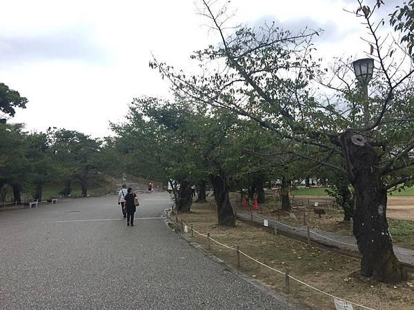 20160905_Himeji_Kobe_238.jpg