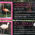 20160907_Osaka_084.jpg