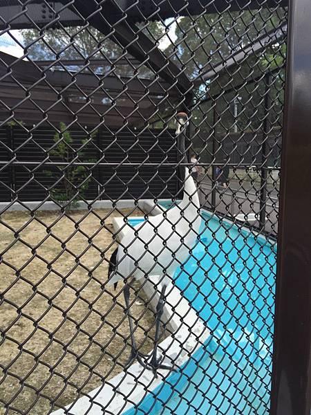20160907_Osaka_092.jpg