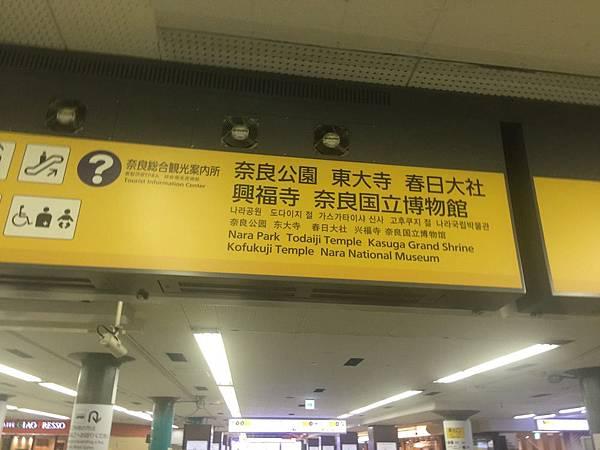 20160908_Nara_Peach_041.jpg