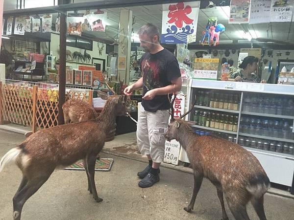 20160908_Nara_Peach_066.jpg