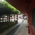 20160908_Nara_Peach_080.jpg