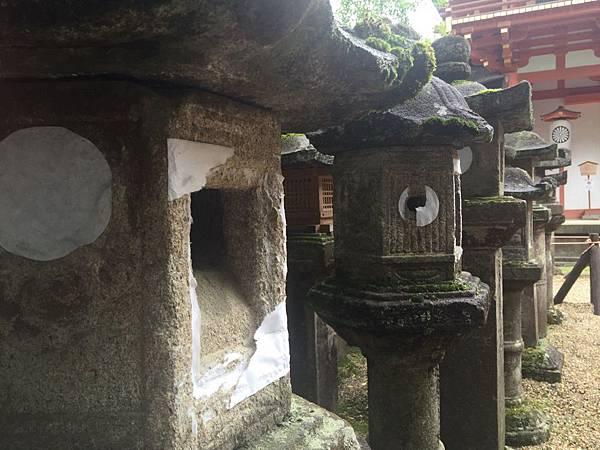 20160908_Nara_Peach_092.jpg