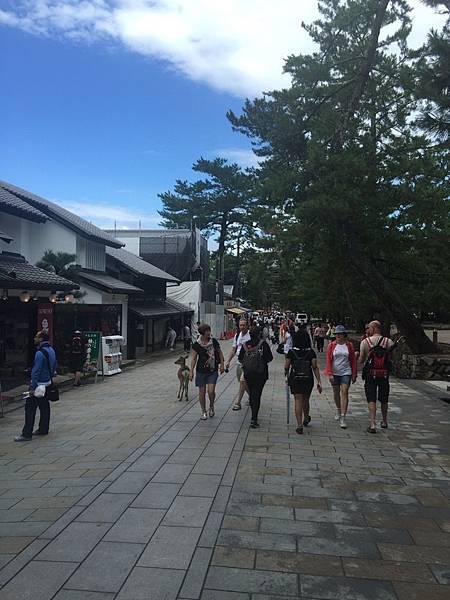 20160908_Nara_Peach_117.jpg