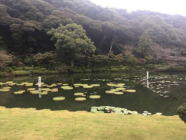 20161017_Beppu_Yufuin_069.jpg