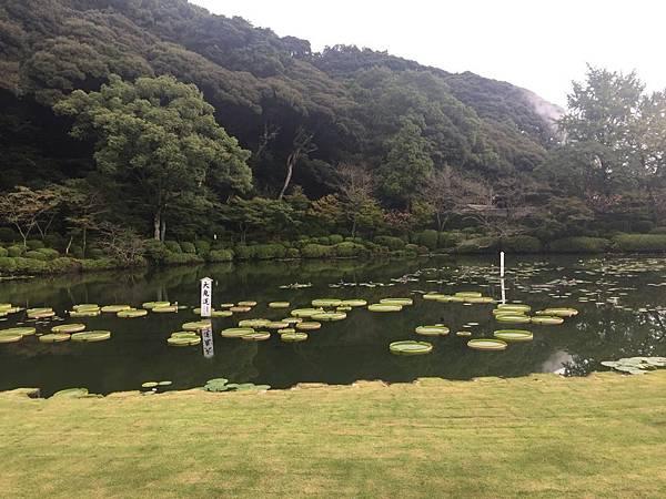 20161017_Beppu_Yufuin_090.jpg