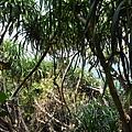 Xiaoliuqiu_20100924_079.jpg