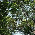 Kenting_20110604059.jpg