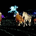 2014台北燈會花博圓山公園 (21).JPG
