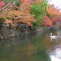 077岡山-倉敷美觀.jpg