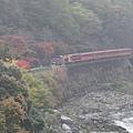 006嵐山-保津峽.JPG