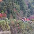 066嵐山-保津峽.JPG