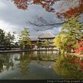 07奈良-東大寺.JPG