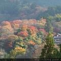 08吉野山-吉水神社UNESCO.JPG