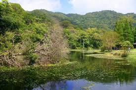 福山植物園3