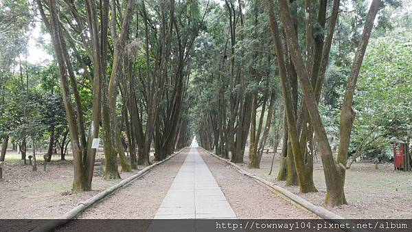 肖楠木步道.JPG
