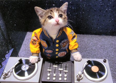 kitty-dj.jpg