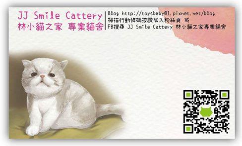 JJ Smile Cattery林小貓之家專業貓舍
