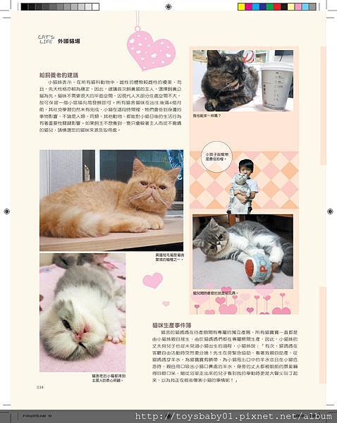 #143CATS-P032-P035-page-003.jpg