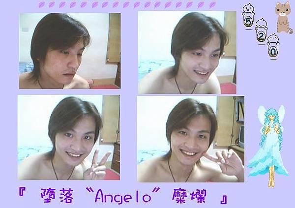 ★頹廢a天使☆ (vans5597)