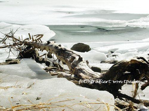 Winter 001.jpg