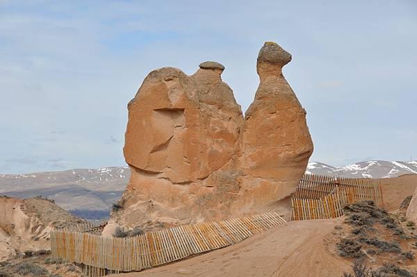卡帕多奇亞的駱駝岩
