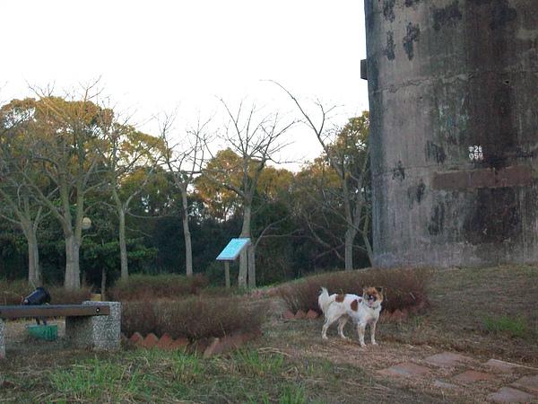 叮叮在都會公園碉堡