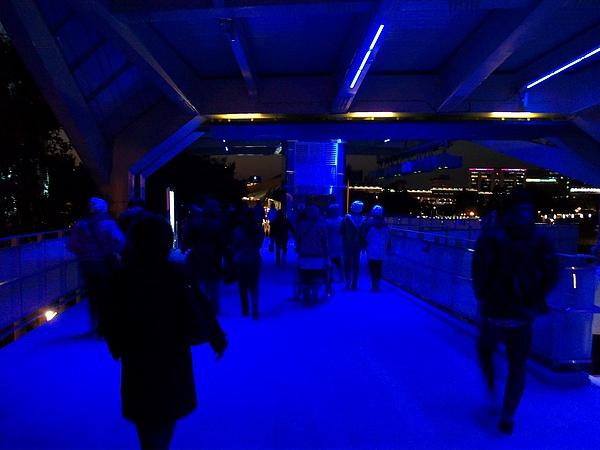 夜晚的美術圓山陸橋