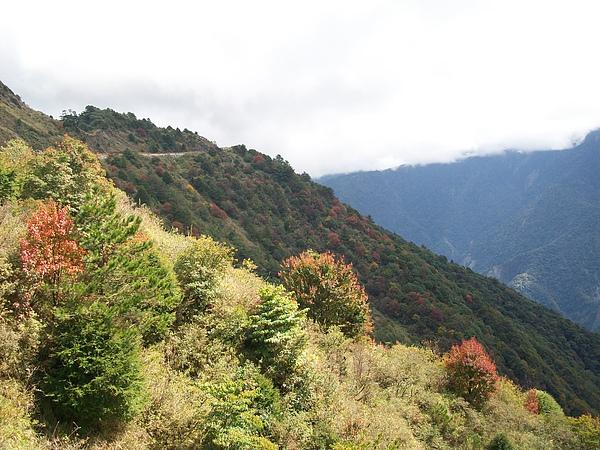 鳶峰的秋冬風景